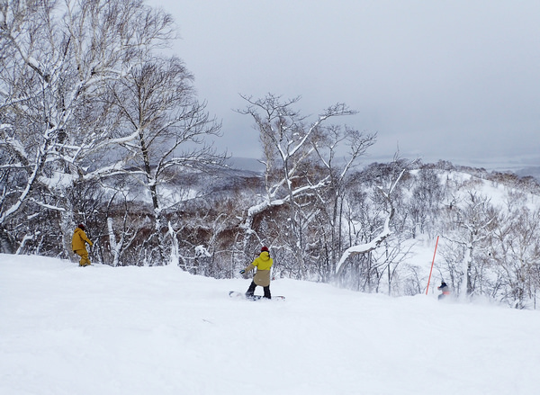 粉雪天堂二世谷之一:Grand Hirafu & HANAZONO
