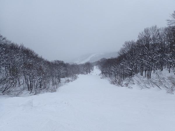 【日本滑雪.新潟】上越國際滑雪場,214個東京巨蛋一樣大的滑雪場!(茶屋紅豆湯)