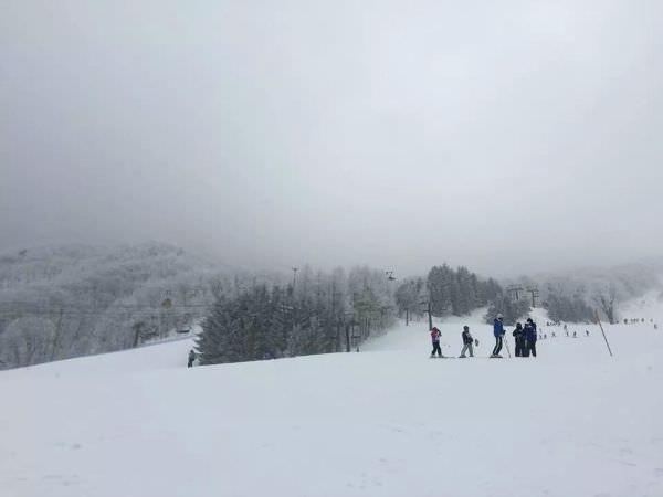 日本藏王滑雪記行之1:藏王溫泉住宿-樹林飯店「ホテル樹林」完整介紹