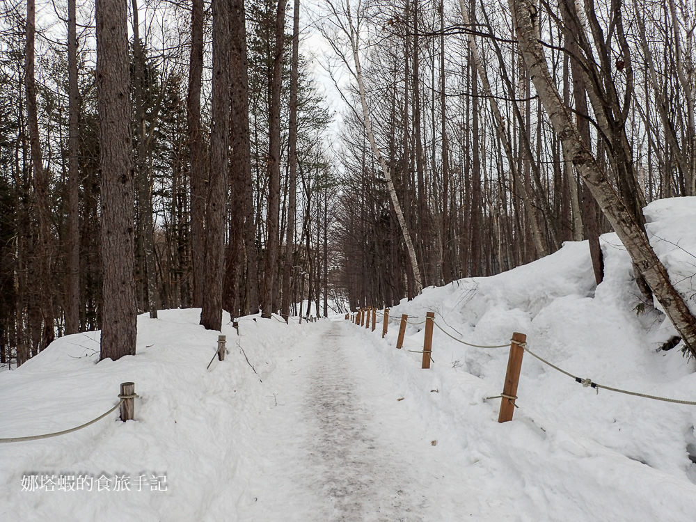 [北海道滑雪]富良野滑雪場,享受粉雪天堂