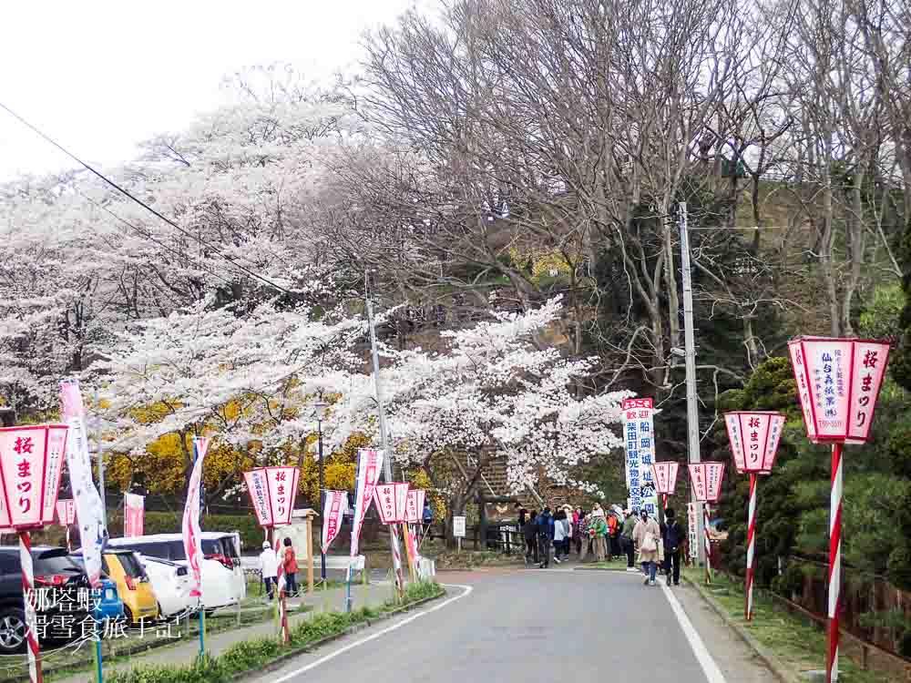 日本東北賞櫻 船岡城址公園,被櫻花包圍的夢幻纜車