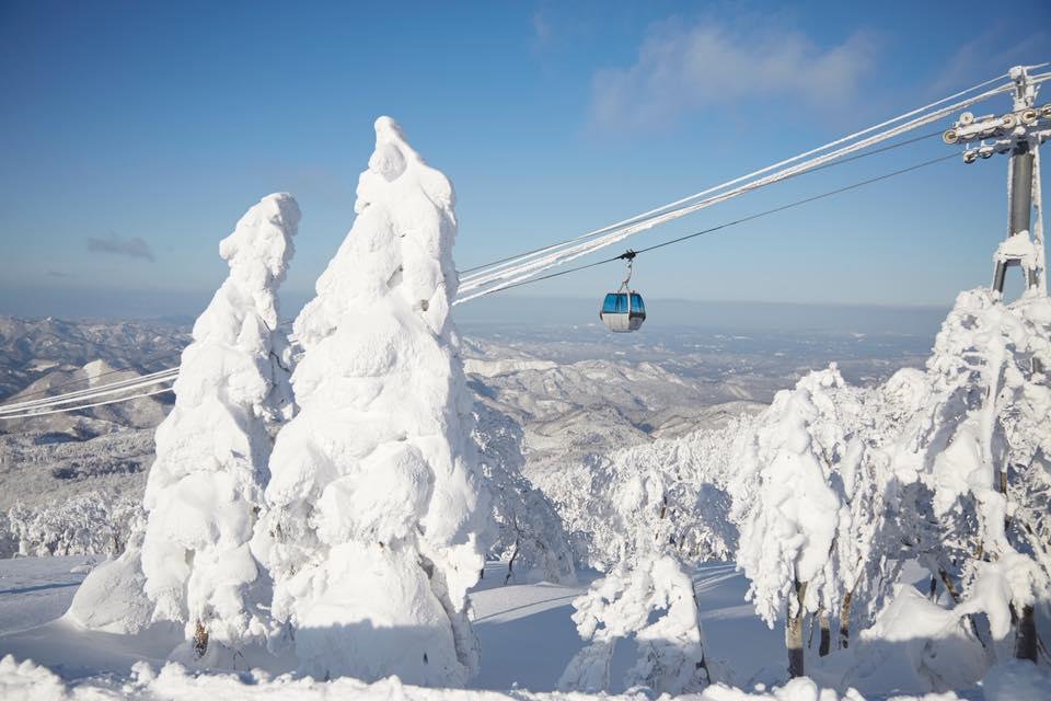 滑雪補助來囉!日本秋田縣滑雪教室,送免費中文滑雪課程