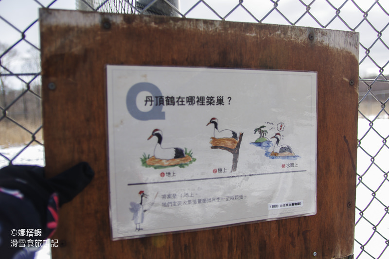 釧路︱冬季丹頂鶴號巴士一日遊:丹頂鶴公園、釧路溼原、SL蒸汽火車